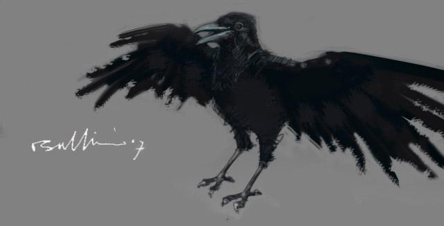 RavenSketch_001